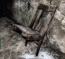 Spirit Chair by Kim  Calvert
