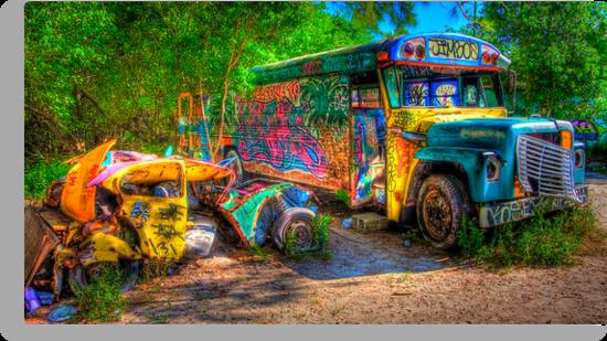 Jimbo's Magic Bus (and Squashed Bug, too) by njordphoto