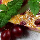 Gooseberry Tarte With Vanilla Cream by SmoothBreeze7