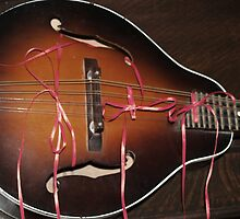 Bows on Strings by BCallahan