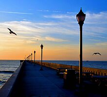 WRIGHTSVILLE BEACH FISHING PIER , NORTH CAROLINA by MIKESANDY