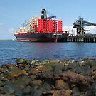 ship loader port kembla panorama by dmaxwell