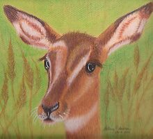 Susan's Impala by Hilary Robinson