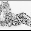 Female Leopard by artysaluki