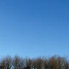 Sky by ClaireWroe