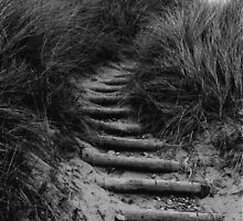 Dune Steps by Les Sharpe