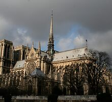 Notre Dame by James Iles