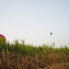 Stalking the elusive hot air balloon by voloro
