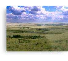 The Great Land Metal Print