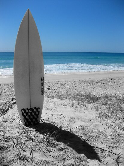 Surfboards Tampa