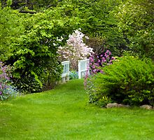 Take a Stroll Through the Garden by Monica M. Scanlan