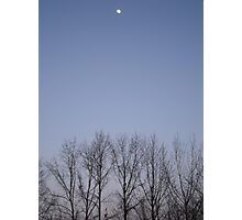 Bare Trees and a Three-quarter Moon Photographic Print