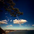 Greetings from Dawlish by Richard Hamilton-Veal