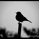 a small life in this big mean world... by Karan  Vir Singh