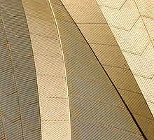 Sydney Opera House Abstract Composition by luvdusty