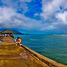 Hanalei Pier Panorama by lckt13