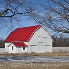 Tree-framed red-roof barn by mltrue