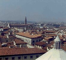 Panorama from the Duomo by leystan