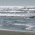 silver waves by tego53