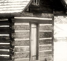 Vance birthplace, Weaverville NC by Heather White