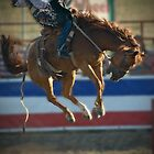 Bucking Bronco - Cranbourne Rodeo 2010 by James Millward