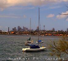 A Sydney Panorama by StarKatz