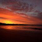 Tasmania by Fiona Kersey