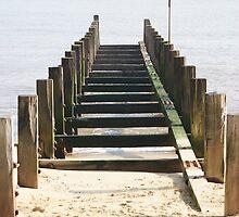 Groyne Leading into the Sea by shane22
