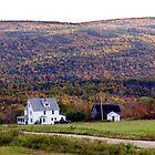 Cape Breton Homestead by Jann Ashworth