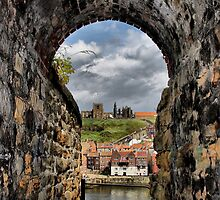 Whitby Harbour from cliff passageway by Nick Barker