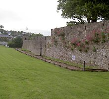 Fortified Town Walls,,Youghal,Co.Cork,Ireland. by Pat Duggan