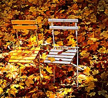 Autumn Chairs by J.Matthew Kianka