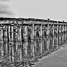 Old Princess Pier (Melbourne) by Jurgen  Schulz