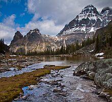 Wiwaxy Peaks by Dunja Bond