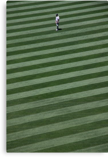 Yankee in the Outfield (California) by BGpix