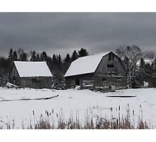 Old barn and horse Photographic Print