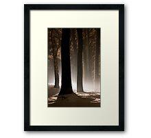 Mysterious Light III Framed Print