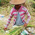 Balinese woman threshing rice by Michael Brewer