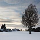 winter dusk by codaimages