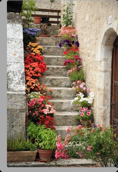 Pretty Steps, France by PaulineC
