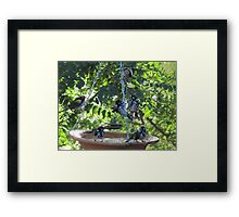 GET DOWN BEFORE YOU FALL DOWN! Framed Print