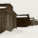 Mens Quarters at Auschwitz, Birkenau. by Linda  Morrison