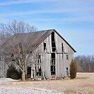 Rural Selma Gray Barn by mltrue