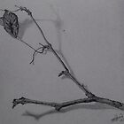 Dry Mantis Branch by fiko