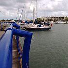 Marina at Raby Bay by rjmp