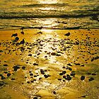Bronze Shore photo painting by randycdesign