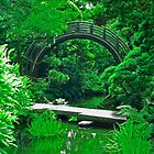 Japanese Garden Bridges photo painting by randycdesign