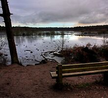 The Resting Place, Delamere by kkimi88