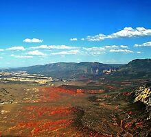 Dinosaur National Monument Colorado/Utah by Jerry Segraves