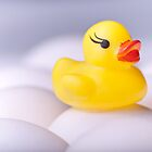 Sitting Duck by Kory Trapane